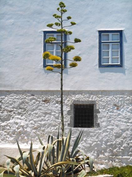 Agios Nicholas_Spetses