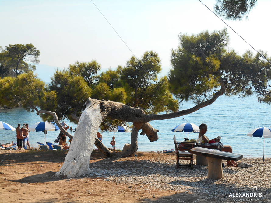 relaxing_at_ag.Paraskevi